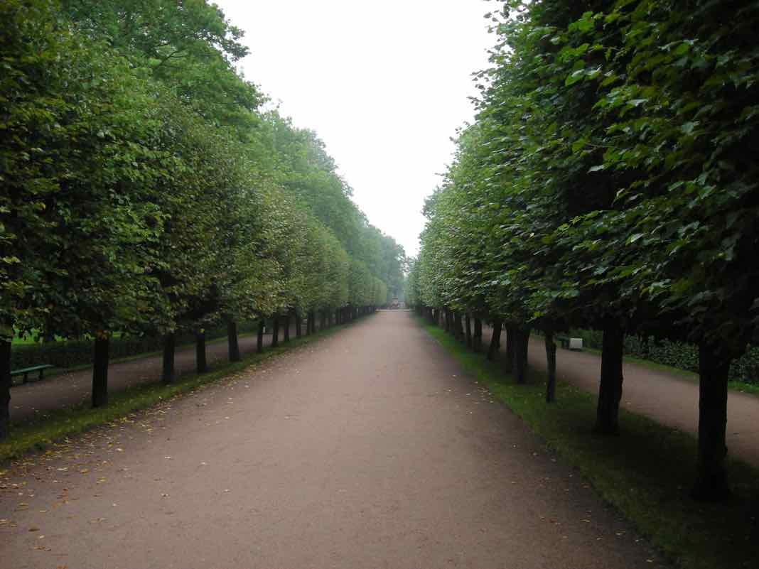 Peterhof Gardens St Petersburg