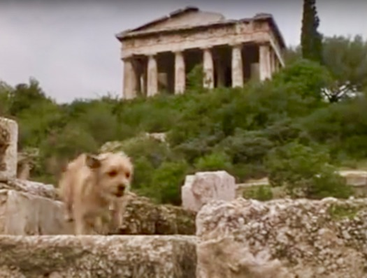 For the Love of Benji Athens Greece Inspiration