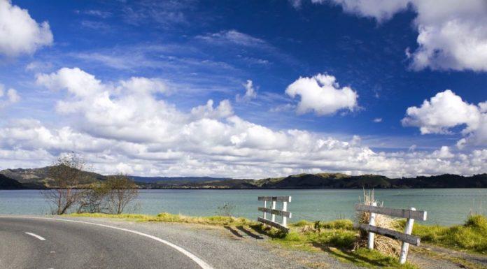 Best New Zealand Road Trip