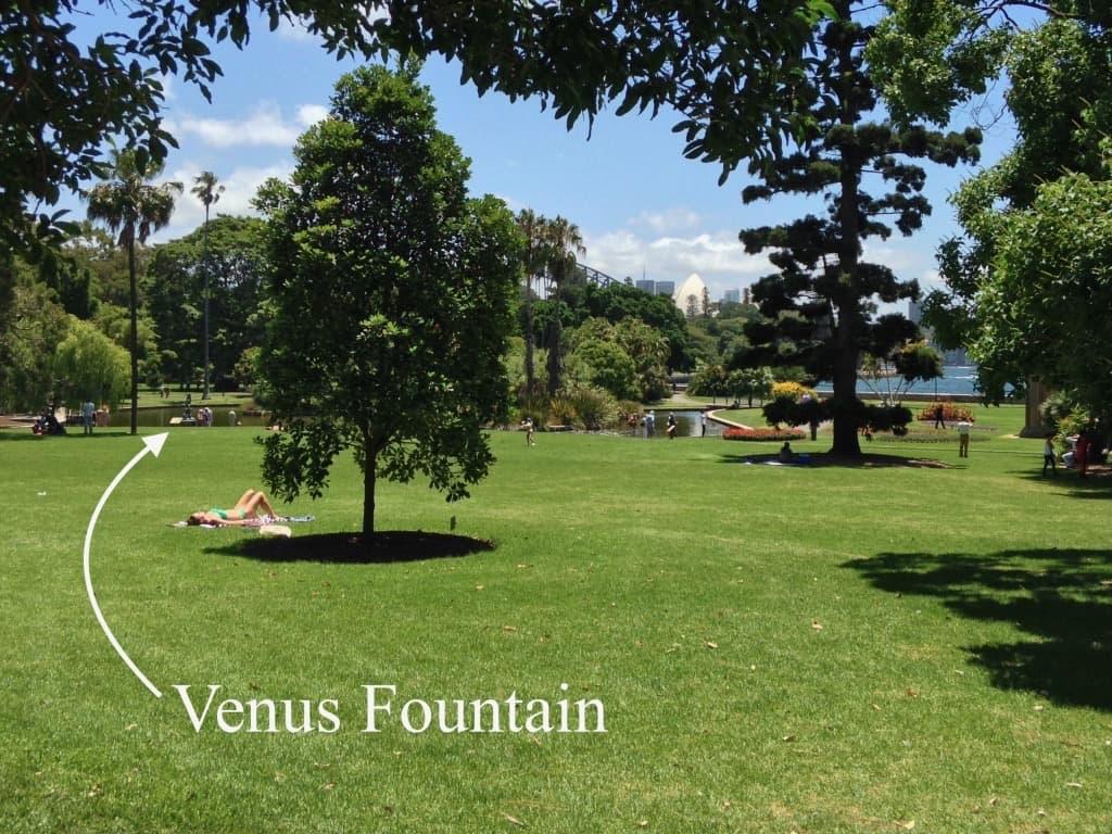 Venus Fountain Royal Botanic Gardens Sydney