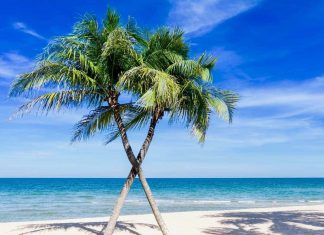 Amazing Caribbean Attractions and Experiences