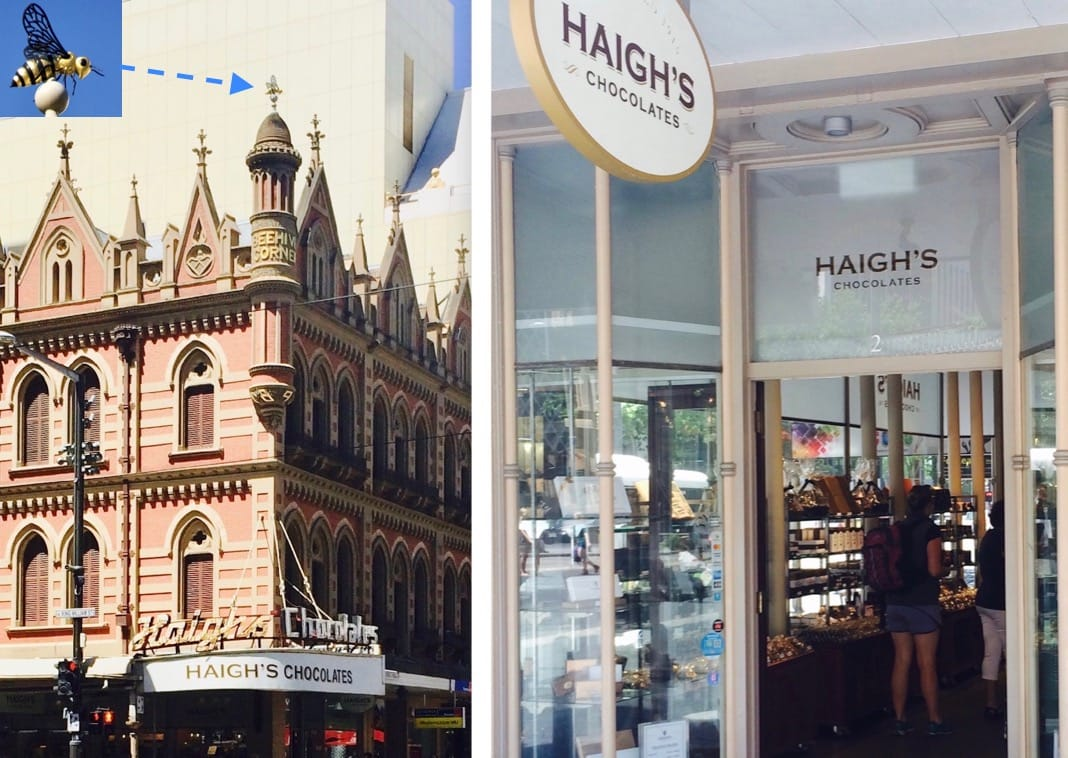 Adelaide Beehive Corner Rundle Mall Haighs Chocolates