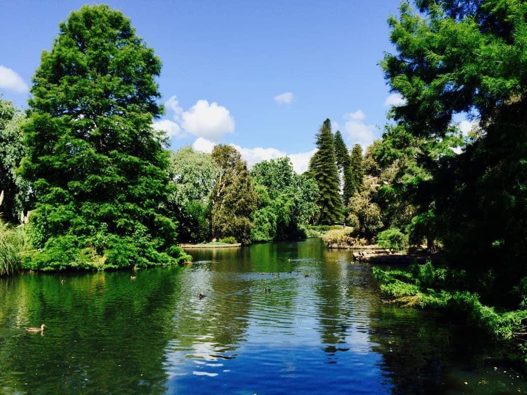 Beautiful Lake Adelaide Botanic Gardens