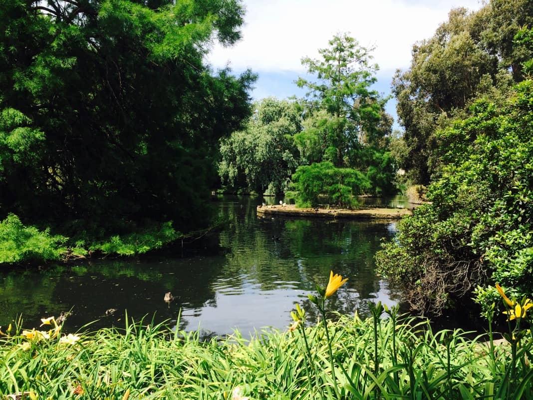 Best Things to do in Adelaide Visit Adelaide Botanic Gardens