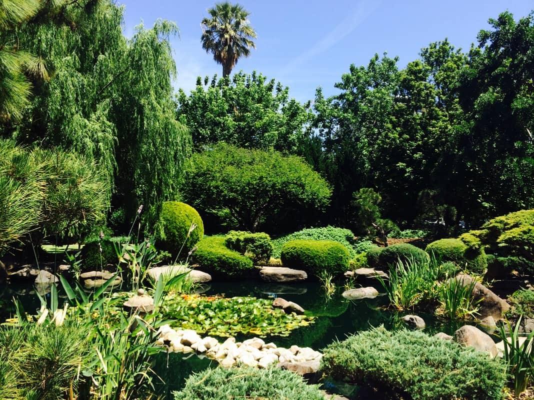 Best things to do in Adelaide Visit Adelaide Himeji Gardens