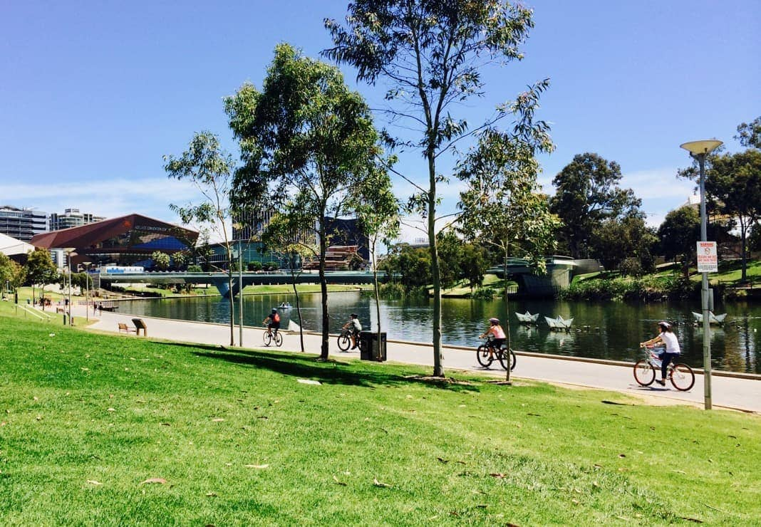 Bike riders cycling along the River Torrens