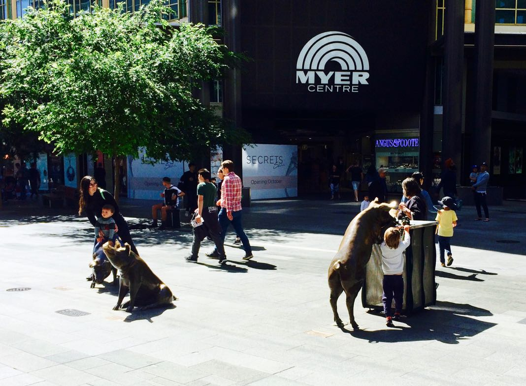 Rundle Mall Pigs Best things to see in Adelaide