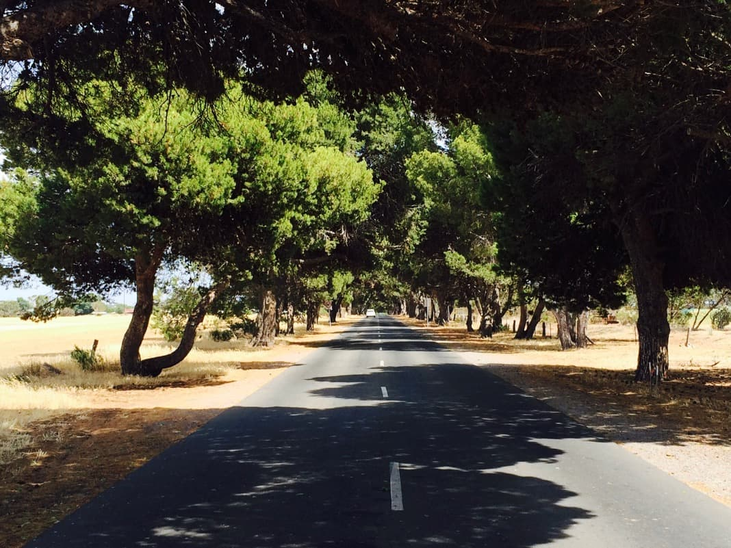 Entrance road to the Star of Greece in Port Willunga