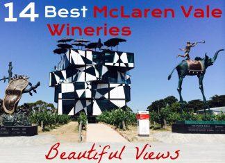 14 Best McLaren Vale Wineries with Beautiful Views