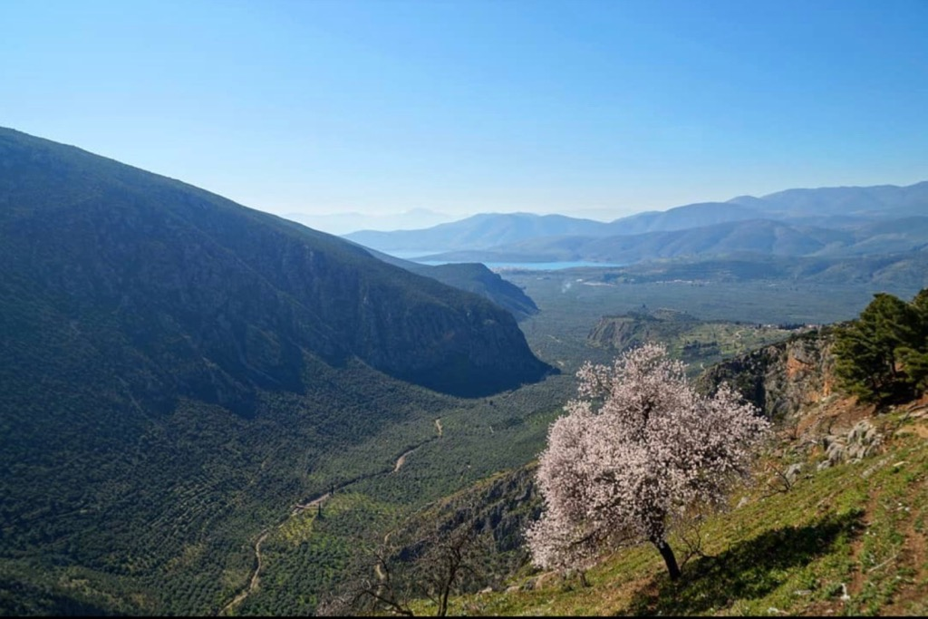 Delphi Mountains