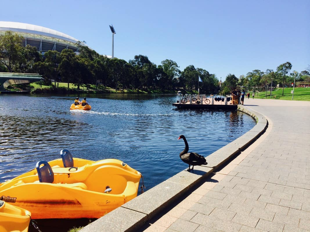River Torrens Adelaide