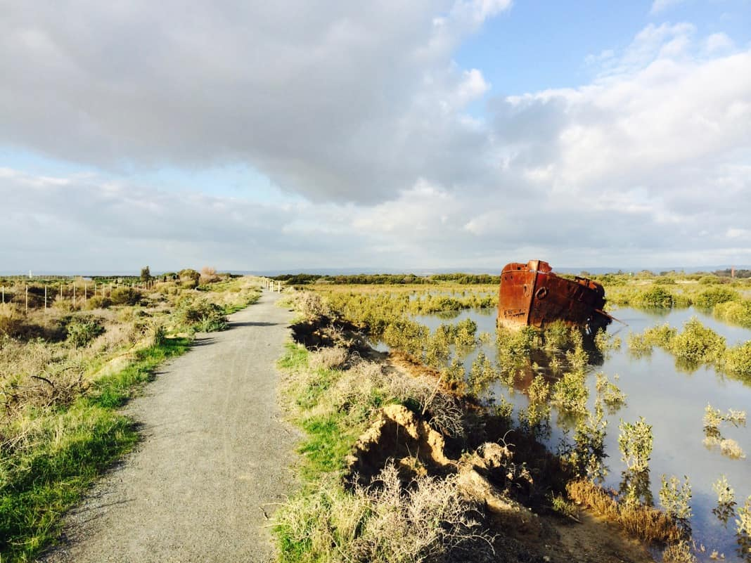 Mutton Cove Conservation Reserve