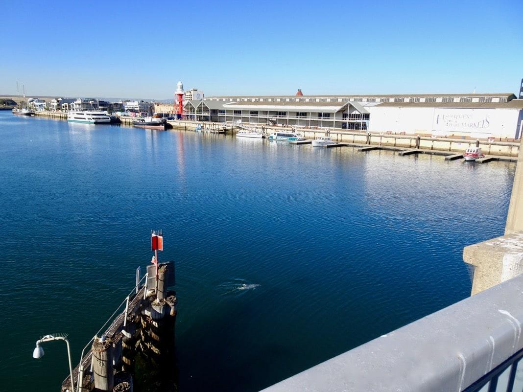View from Birkenhead bridge in Port Adelaide