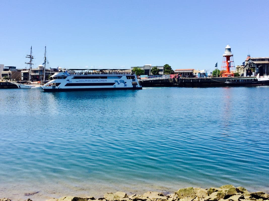 Port Adelaide Attractions Dolphin Explorer