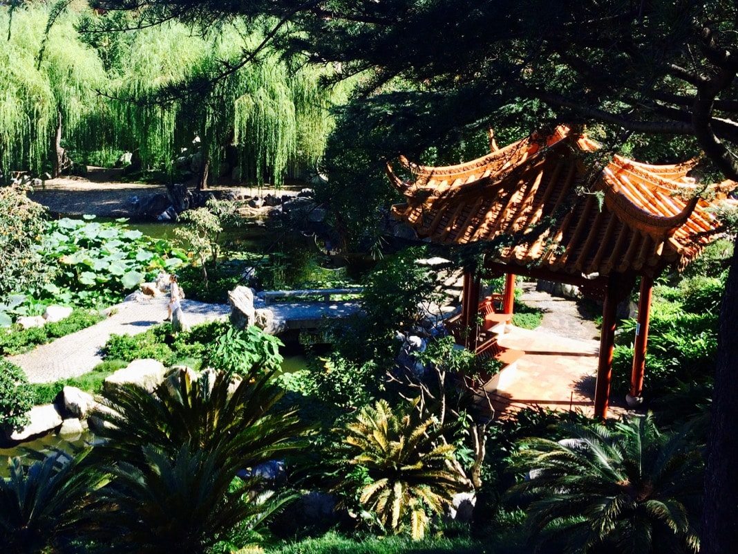Beautiful view in the Chinese Garden