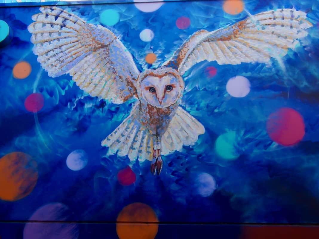 Howling Owl Mural Adelaide South Australia