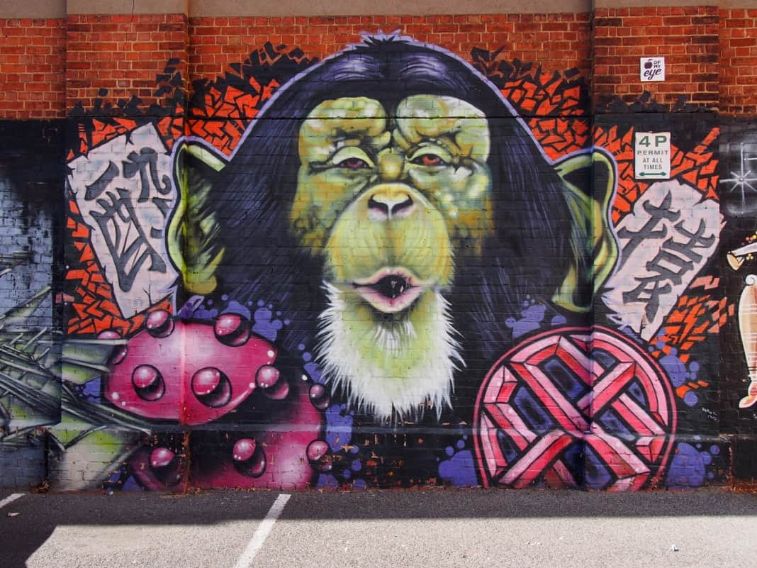 Monkey mural on Adelaide car park wall
