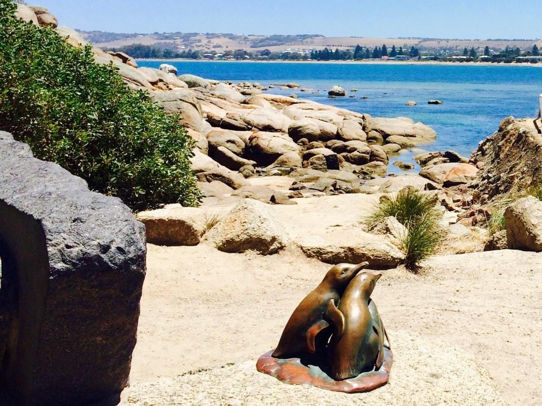 Penguins Granite Island