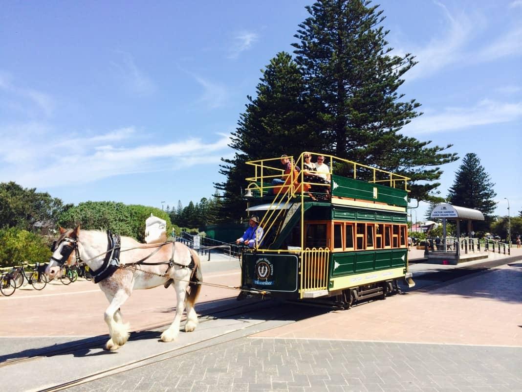 Horse Drawn Tram Victor Harbor South Australia