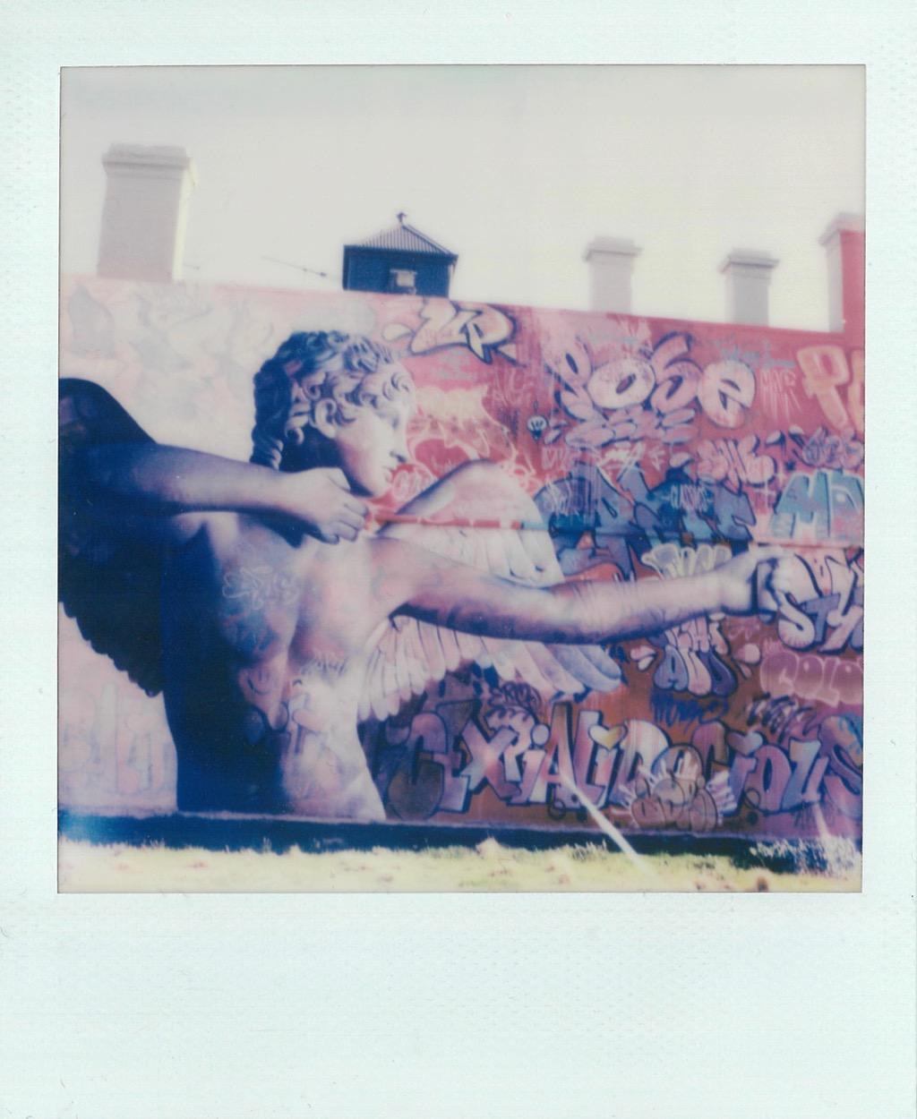 Polaroid SX-70 Photo 2 Eros
